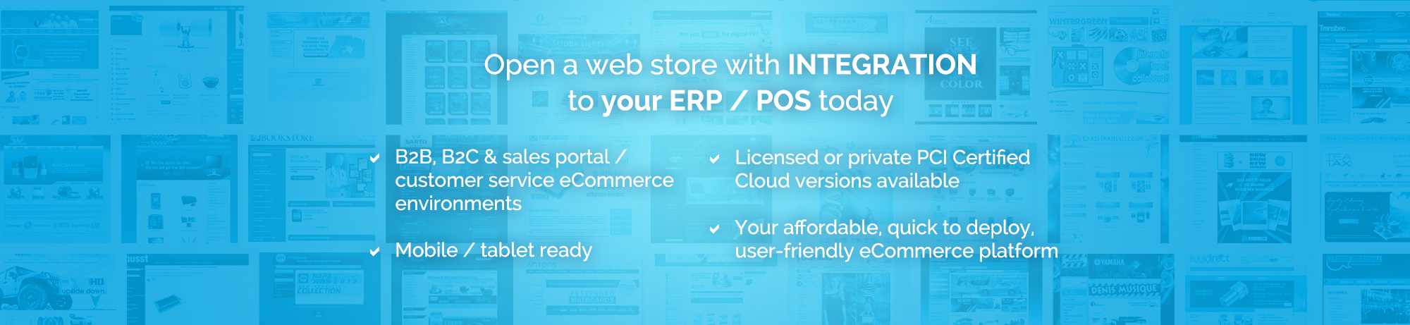 Open a web store with integration to your ERP