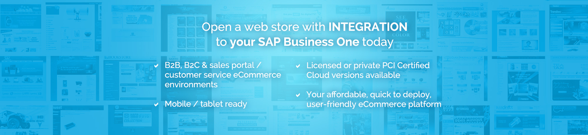 Open a web store with integration to SAP Business One